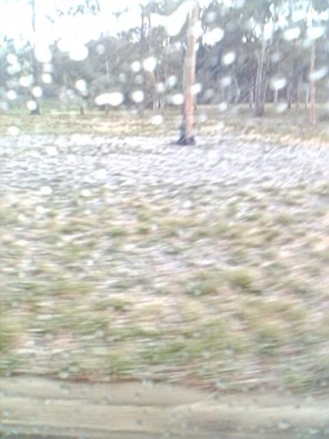 snow_in_november_1.jpg